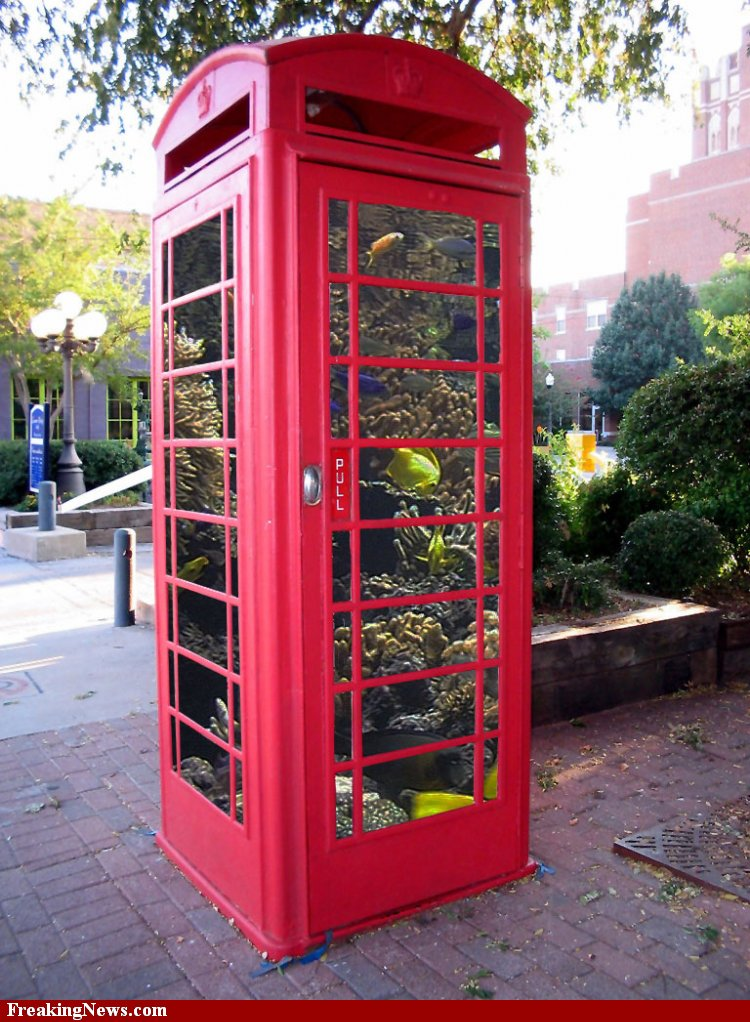 Red telephone box conversion