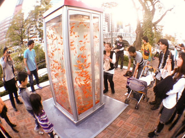 Aquarium Phone Booth Japan